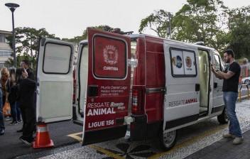 Curitiba ganha ambulância para resgatar cachorros e gatos em risco nas ruas