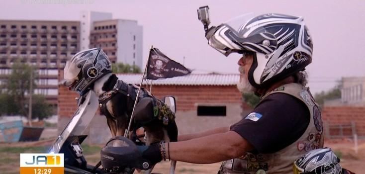 Cadelas 'motoqueiras' usam capacete e óculos durante viagem com dono pelo Brasil