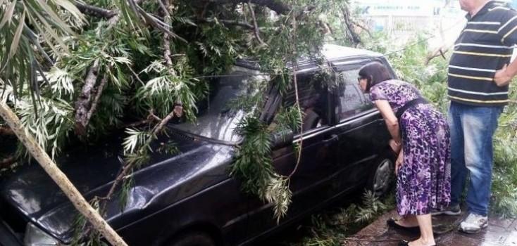 Segurança Pública aprova novas regras para registro de veículos acidentados