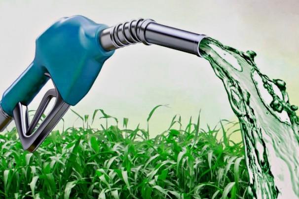 Brasil alcança a maior produção de etanol da história