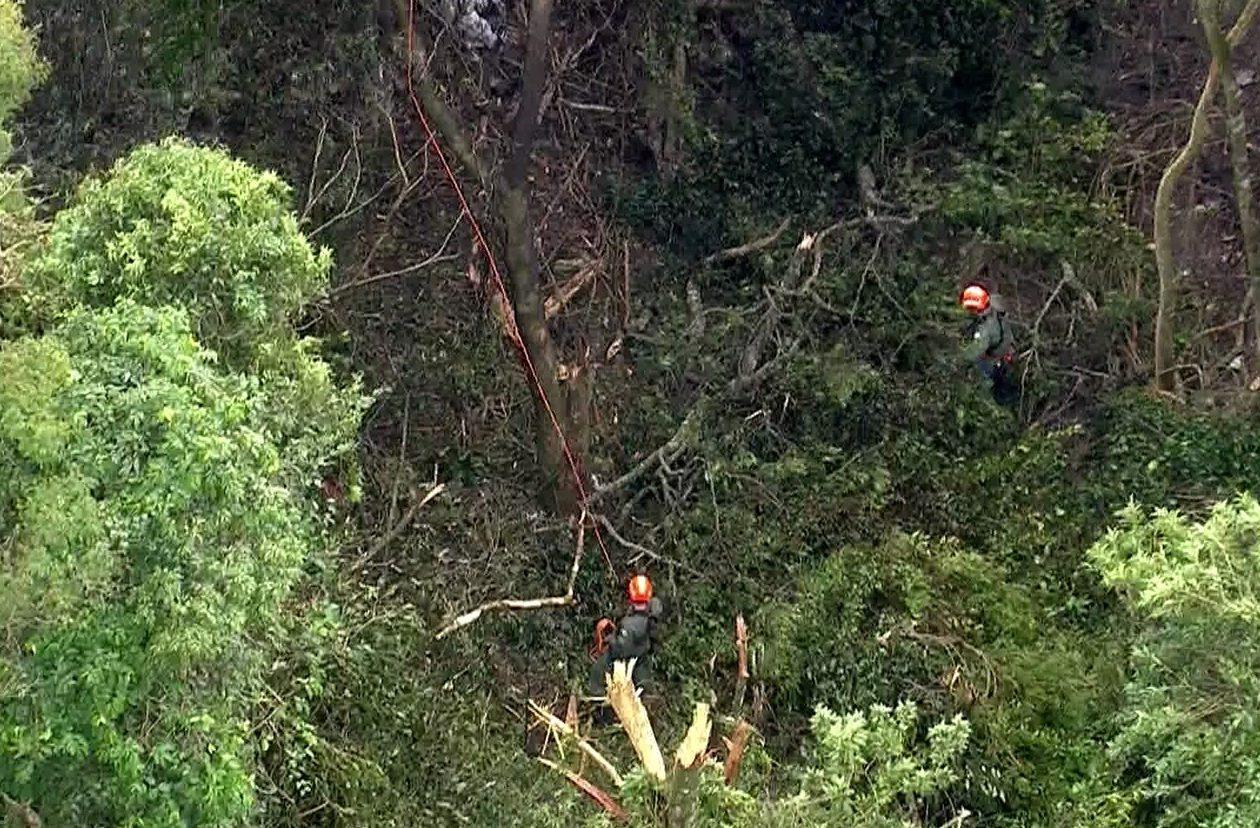 Avião de pequeno porte cai na Serra da Cantareira em São Paulo